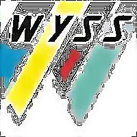 Logo 5) Wyss Aluhit Ag