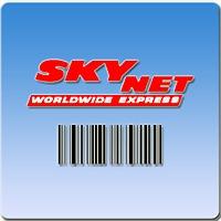 Logo 81) Skynet Worldwide Express Maroc