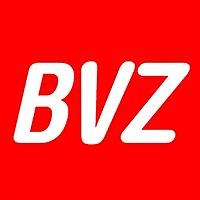 Logo 3) Bvz
