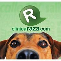 Logo 10) Raza S.a.