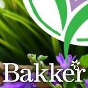 Logo 1) Bakker & Van Dam