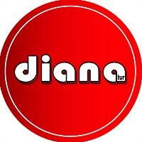 Logo 20) Диана-Тур