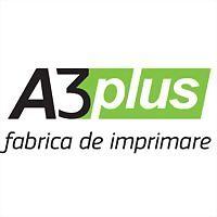 Logo 7) Типография A3Plus.md
