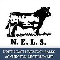 Logo 11) Acklington Mart