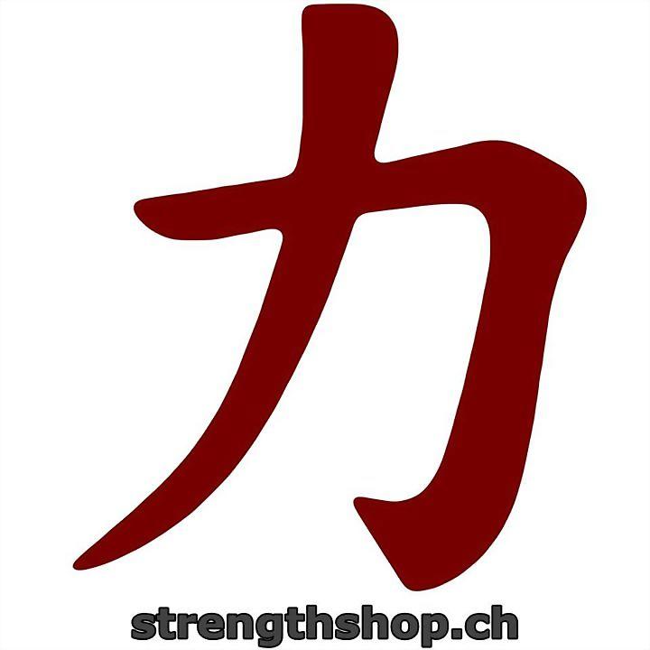 Logo 4) Strengthshop CH