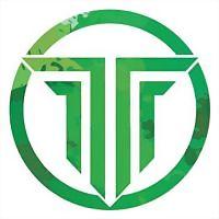 Logo 38) Techauric Technologies