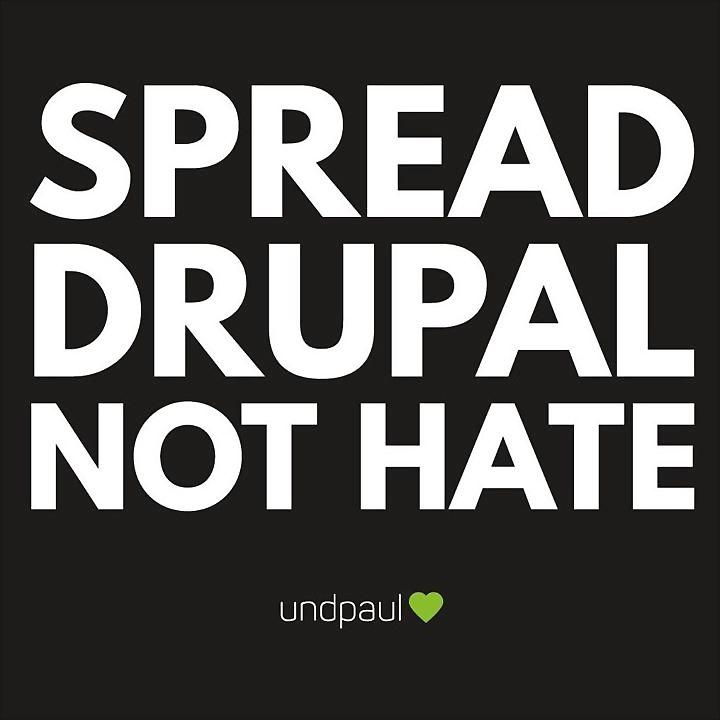 Logo 14) undpaul