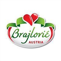 Logo 9) Brajlovic Austria