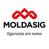 Logo 16) Moldasig
