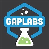 Logo 2) Gaplabs