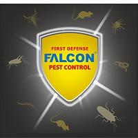 Logo 6) Falcon Elektronik