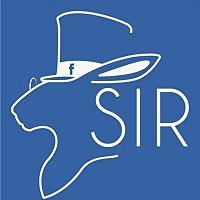 Logo 7) Sir Bermuda