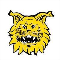 Logo 4) Ilves Ry