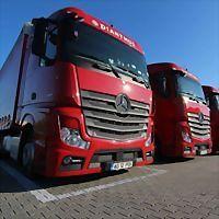 Logo 2) First Truck Service Srl Bradu