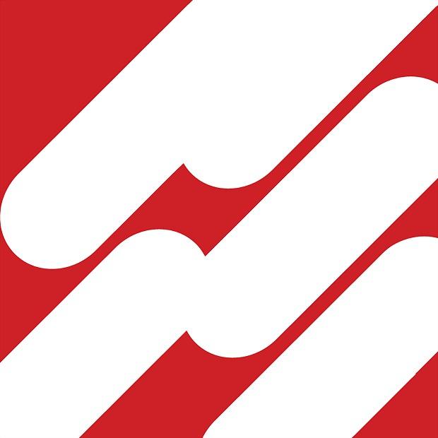 Logo 95) PageSuite