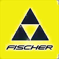 Logo 22) Fischer Romania