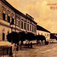 Logo 9) Muzeum Bojkovska