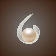 Logo 61) Baku Pearl Residence