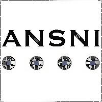 Logo 23) Ansni
