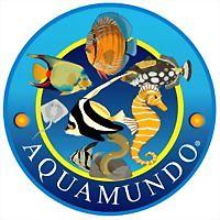 Logo 4) Soc Comercial Aquamundo Limitada
