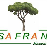 Logo 3) Safran Cb