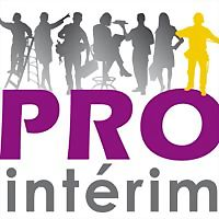 Logo 7) Pro Interim