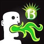 Logo 8) Waza B