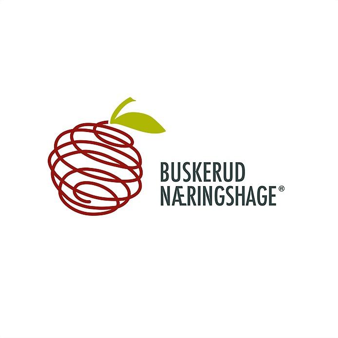 Logo 38) Buskerud Næringshage