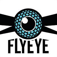Logo 6) Flyeye
