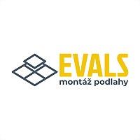 Logo 30) Evals
