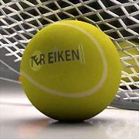 Logo 4) Ter Eiken Tennis En Squash