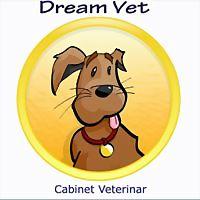 Logo 4) Dream Vet