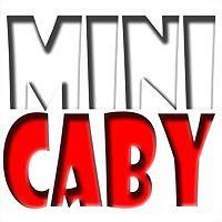 Logo 34) Polskie Minicaby