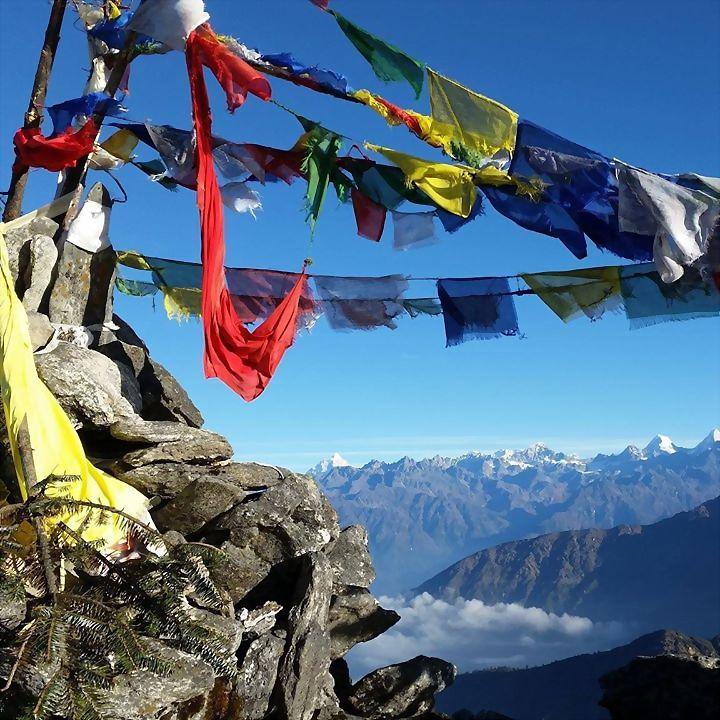 Logo 3) Stiftung Tibet forever