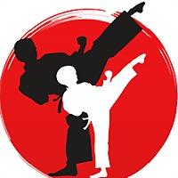 Logo 13) Карате Минска - Школа Мужества