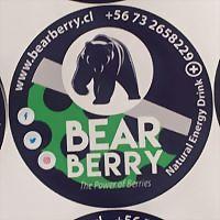 Logo 4) Bearberry