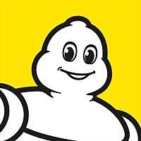Logo 40) Michelin Passion France