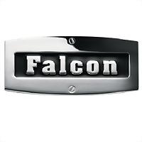 Logo 2) Falcon Fornuizen By Denardi