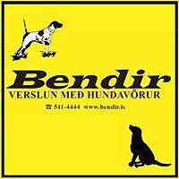 Logo 3) Bendir