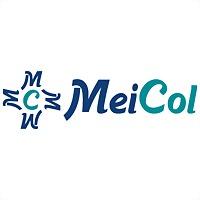 Logo 3) Meicol Medicina Estetica Integral De Colombia Ltda