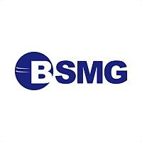 Logo 16) Bsmg - Bs Metal Group
