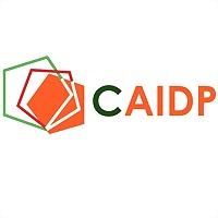 Logo 3) Caidp