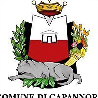 Logo 6) Comune Di Capannori
