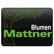 Logo 5) Mattner Franz