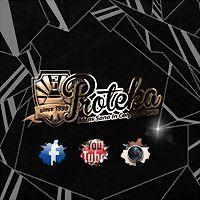 Logo 9) Proteka.hr