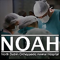 Logo 3) North Dublin Orthopaedic Animal Hospital